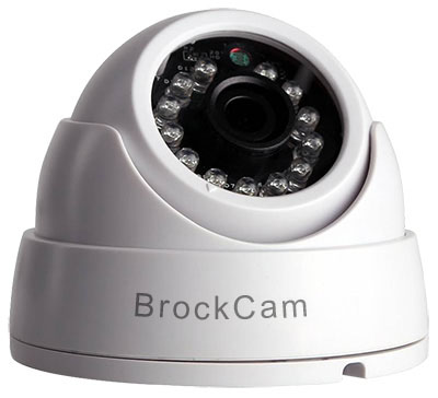 Brockmoor cattery foscam camera